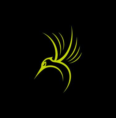 蜂鸟 轻旅行品牌设计