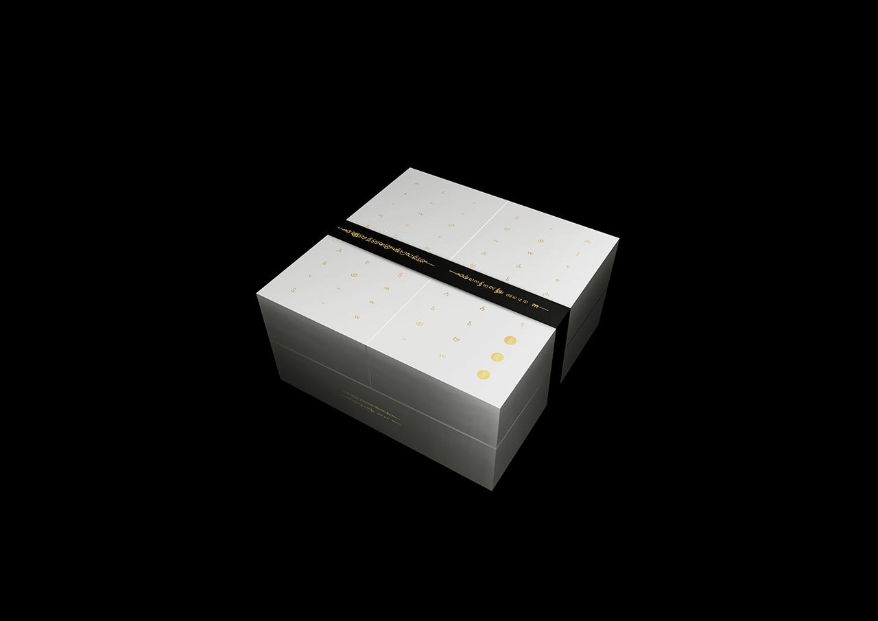五元素 包装效果 dd 02